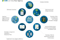 Government Agency Reform