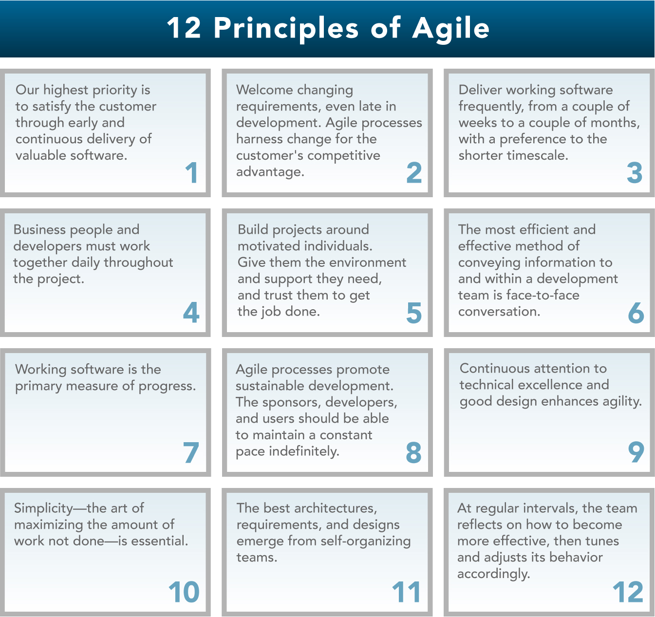 Auditing Agile Projects Things To Consider The Center For Organizational Excellence Inc